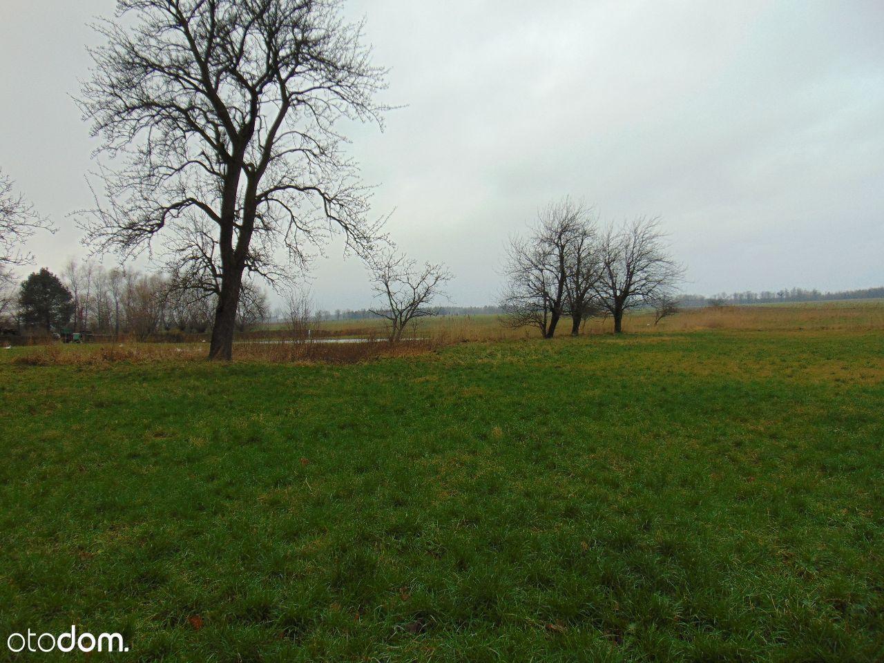 Dom na sprzedaż, Niedźwiedź, ząbkowicki, dolnośląskie - Foto 10
