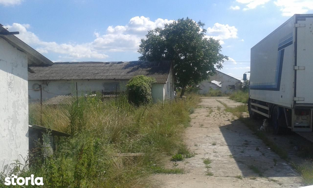 Depozit / Hala de vanzare, Caraș-Severin (judet), Berzovia - Foto 8