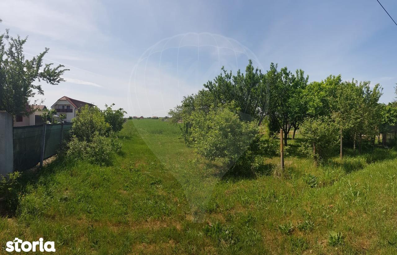 Teren de Vanzare, Satu Mare (judet), Decebal - Foto 1