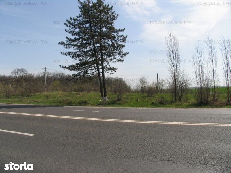 Teren de Vanzare, Tancabesti, Bucuresti - Ilfov - Foto 4