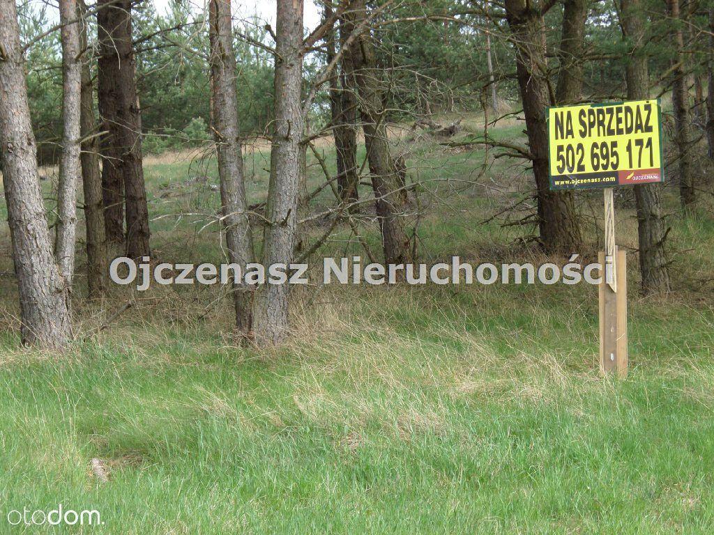 Działka na sprzedaż, Stara Rzeka, świecki, kujawsko-pomorskie - Foto 6