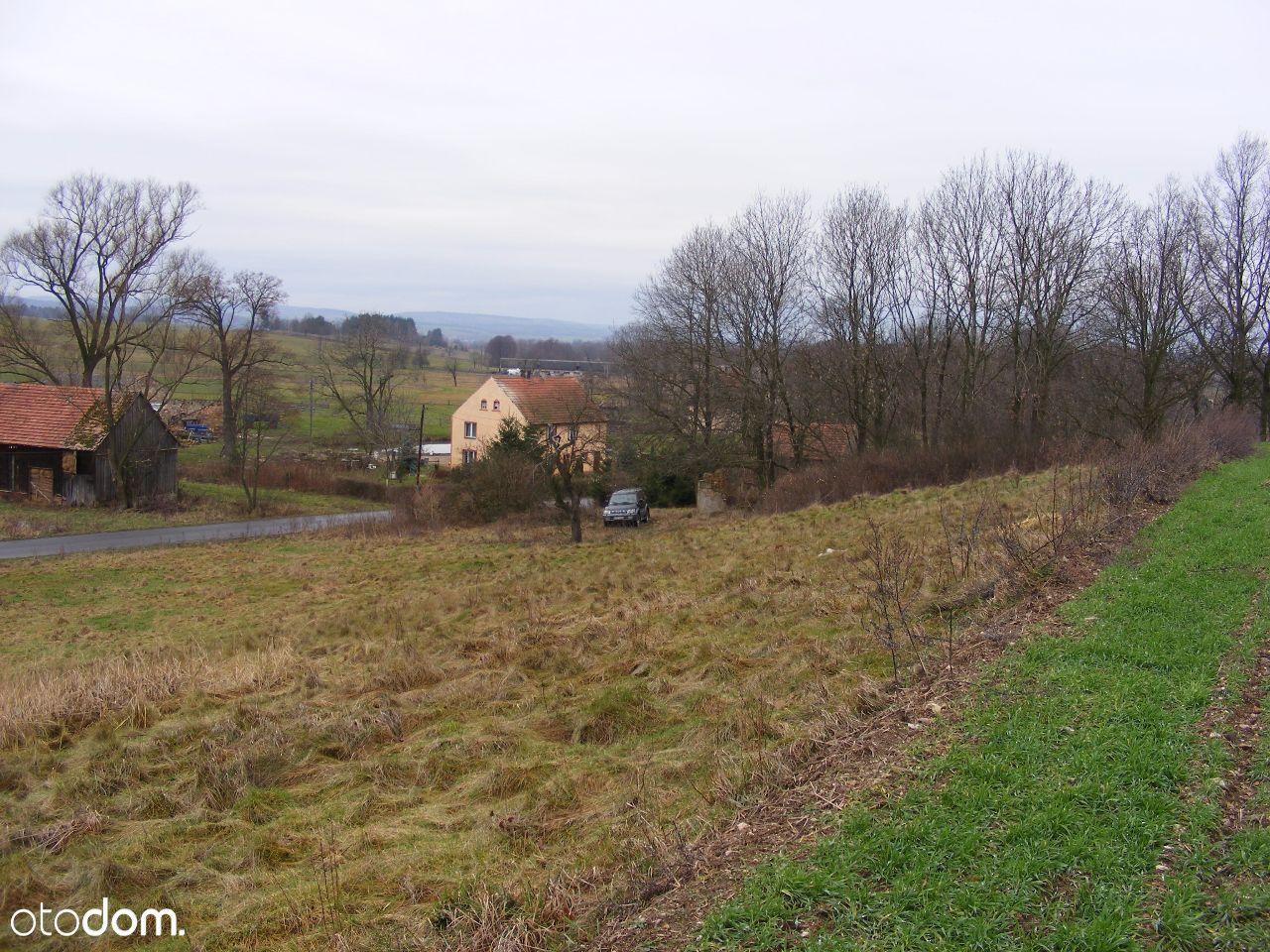Działka na sprzedaż, Dłużec, lwówecki, dolnośląskie - Foto 6