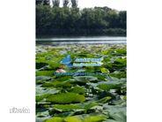 Teren de Vanzare, Ilfov (judet), Intrarea Brădișului - Foto 13