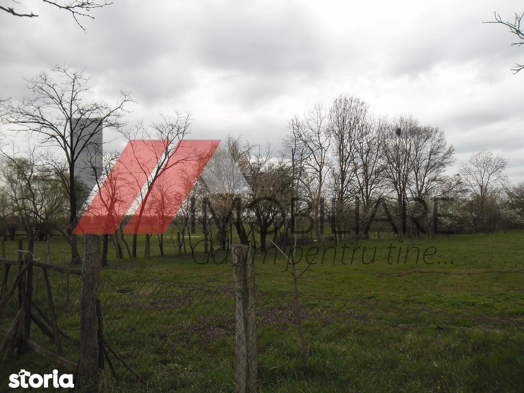 Casa de vanzare, Timiș (judet), Chevereşu Mare - Foto 4