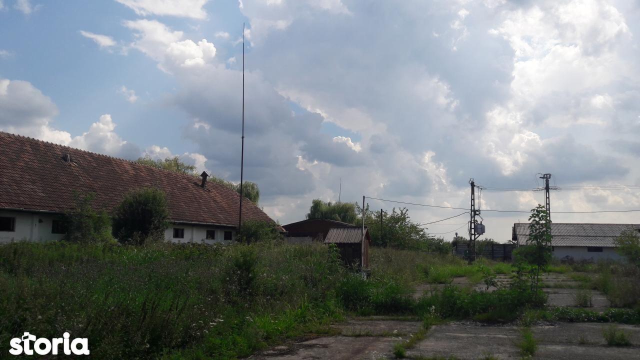 Depozit / Hala de vanzare, Timiș (judet), Remetea Mare - Foto 9