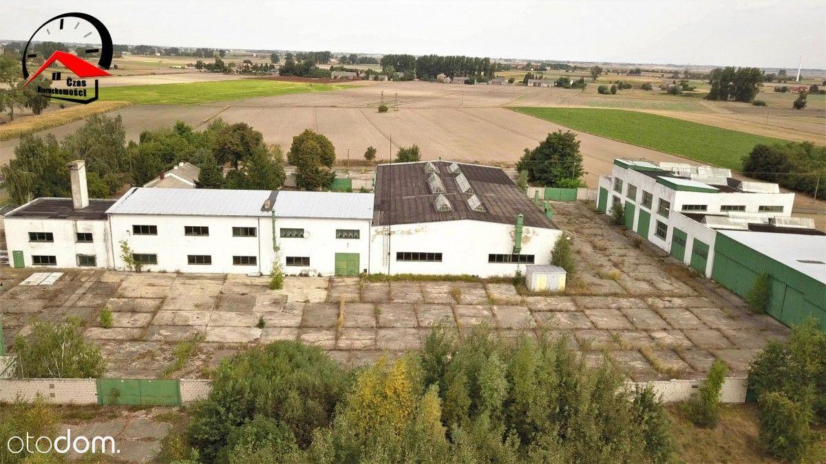 Hala/Magazyn na sprzedaż, Konin, wielkopolskie - Foto 2
