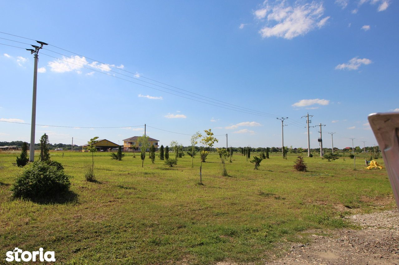 Teren de Vanzare, Timiș (judet), Drumul DJ609F - Foto 8