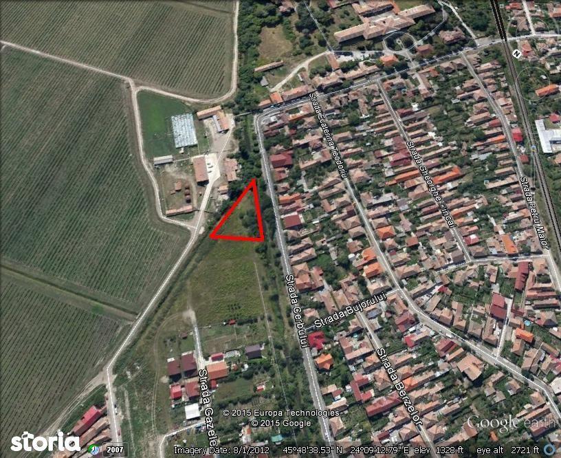 Teren de inchiriat, Sibiu (judet), Terezian - Foto 3