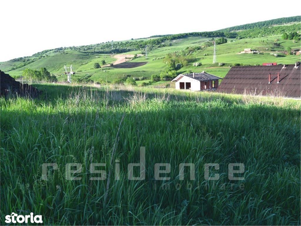 Teren de Vanzare, Cluj-Napoca, Cluj, Dambul Rotund - Foto 1