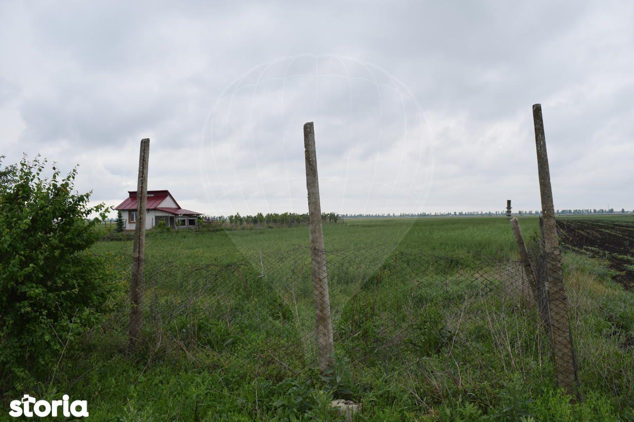 Teren de Vanzare, Vrancea (judet), Vânători - Foto 4