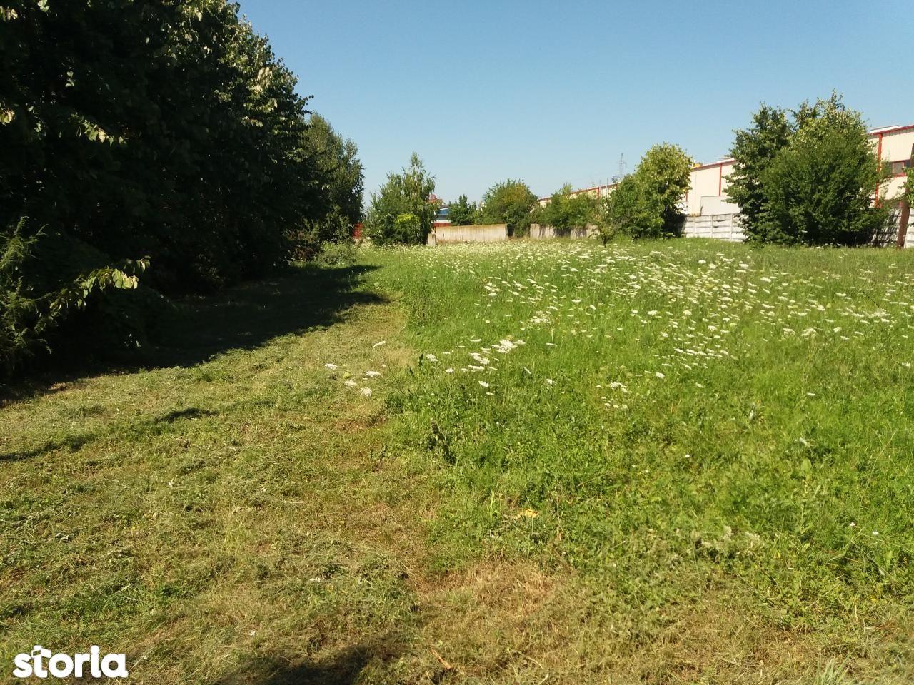 Depozit / Hala de vanzare, Bucuresti, Sectorul 2, Pantelimon - Foto 12