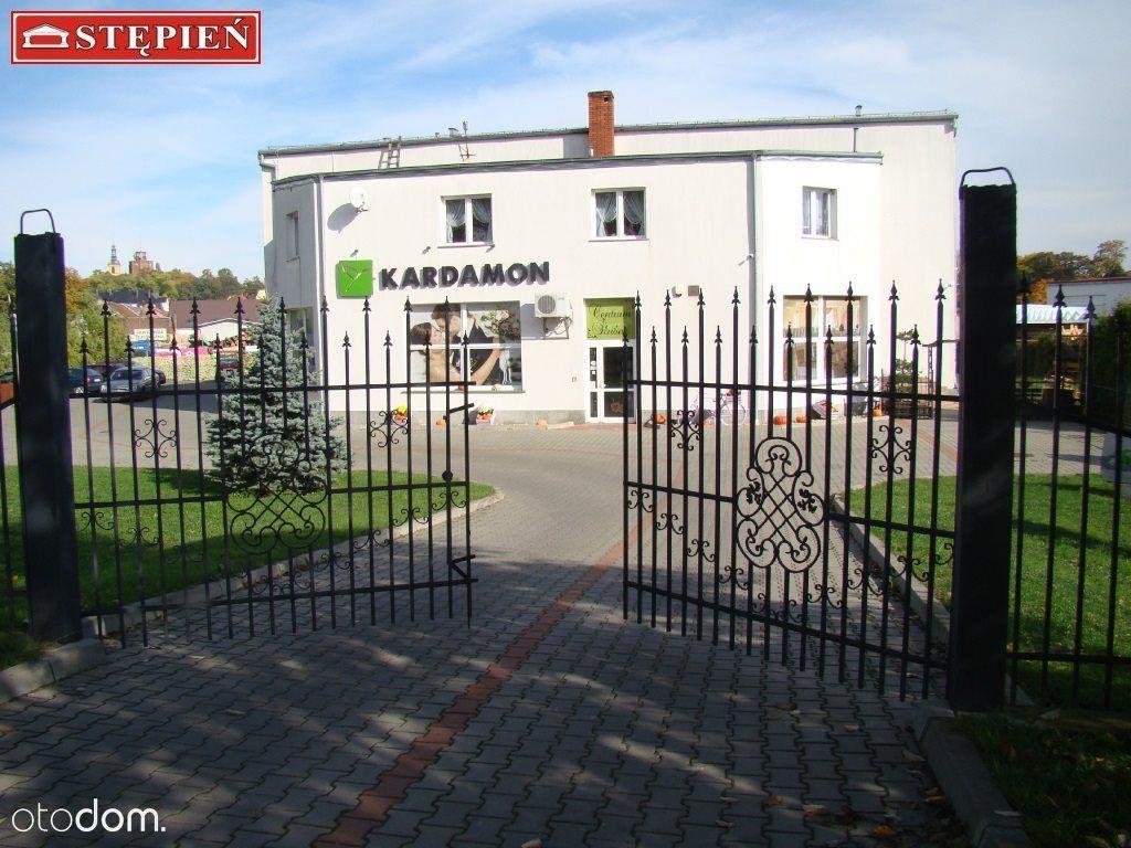 Hala/Magazyn na sprzedaż, Dzierżoniów, dzierżoniowski, dolnośląskie - Foto 1