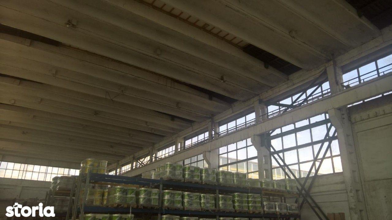 Depozit / Hala de vanzare, Iasi, Zona industriala - Foto 7