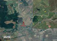 Teren de Vanzare, Ilfov (judet), Micşuneştii-Moară - Foto 3