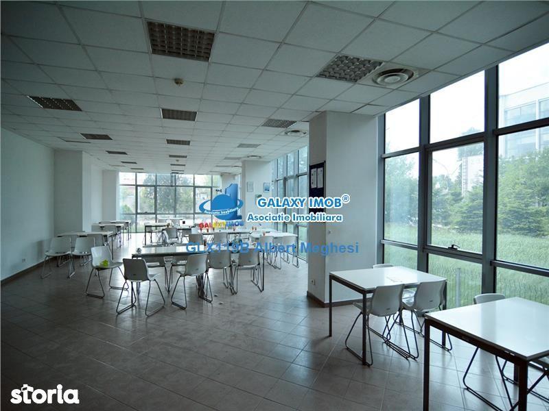 Birou de vanzare, București (judet), Strada Piscul Răchitei - Foto 4
