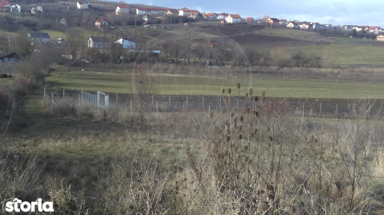 Teren de Vanzare, Cluj (judet), Colonia Borhanci - Foto 2