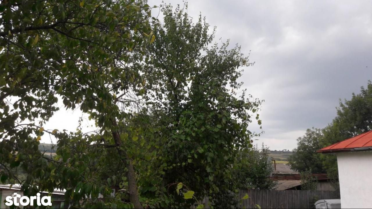 Teren de Vanzare, Iași (judet), Schitu Duca - Foto 3
