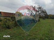 Teren de Vanzare, Maramureș (judet), Piatra - Foto 18