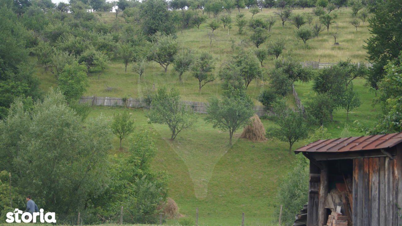 Casa de vanzare, Neamț (judet), Bălţăteşti - Foto 10