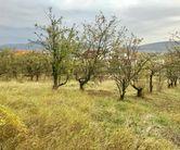 Teren de Vanzare, Bistrița-Năsăud (judet), Bistriţa - Foto 3