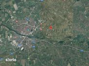 Teren de Vanzare, Satu Mare (judet), Odoreu - Foto 1