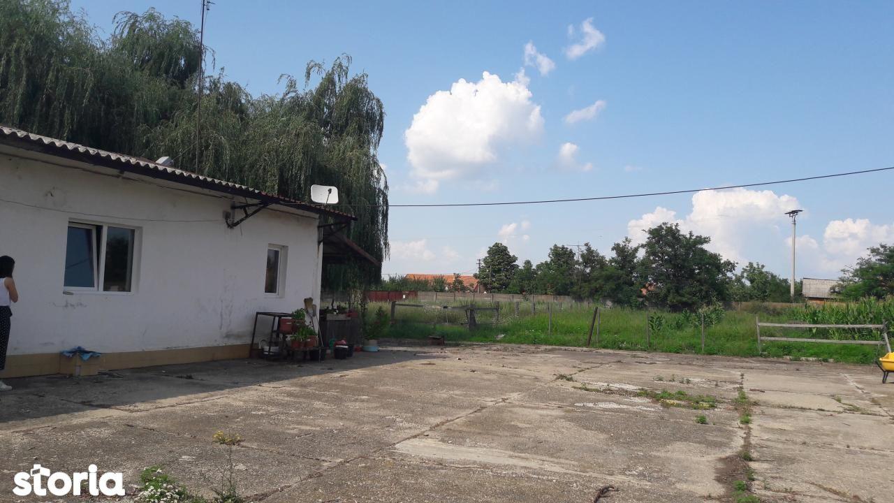 Depozit / Hala de vanzare, Timiș (judet), Remetea Mare - Foto 16