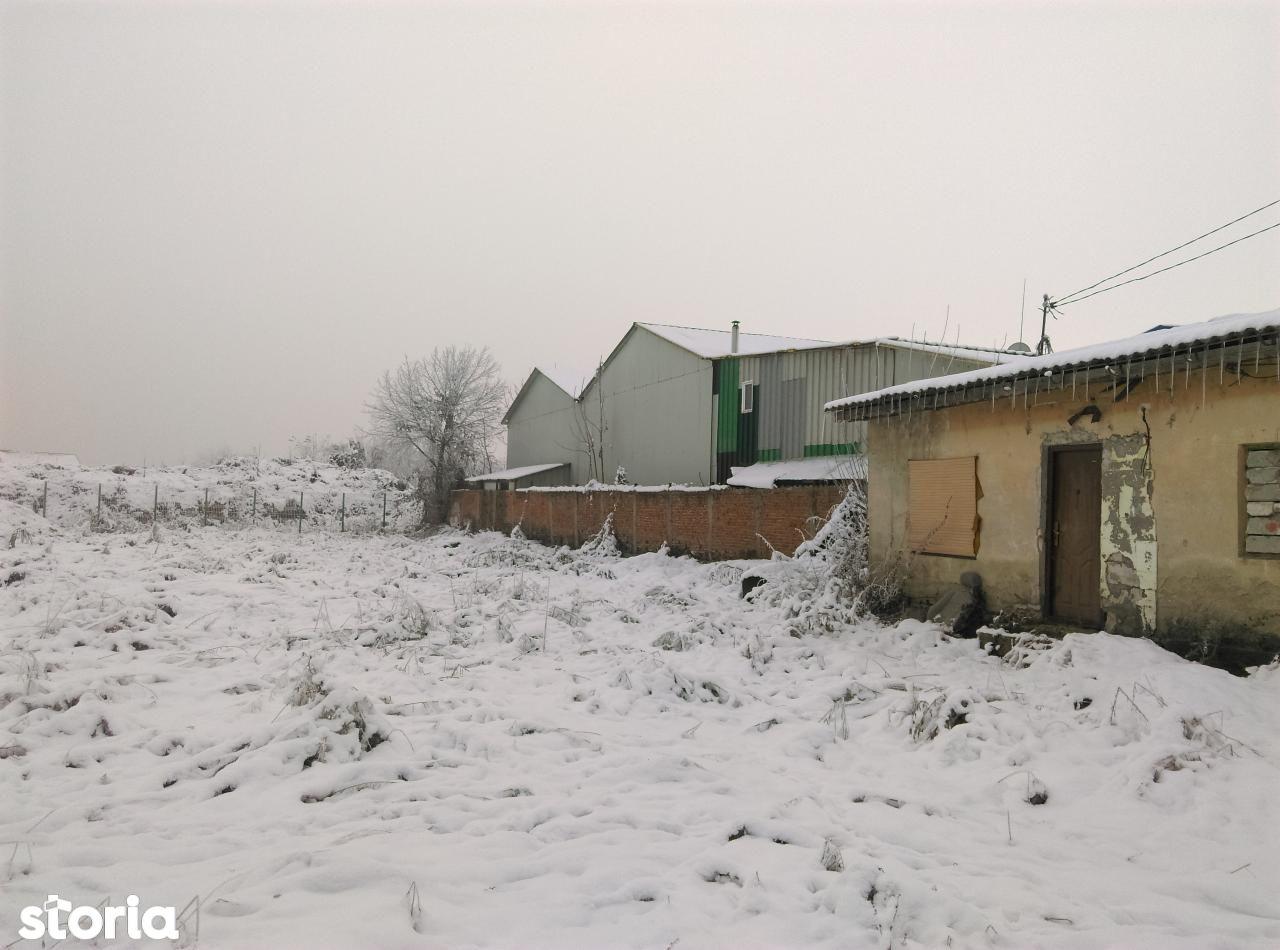 Teren de Vanzare, Dolj (judet), Lascăr Catargiu - Foto 7