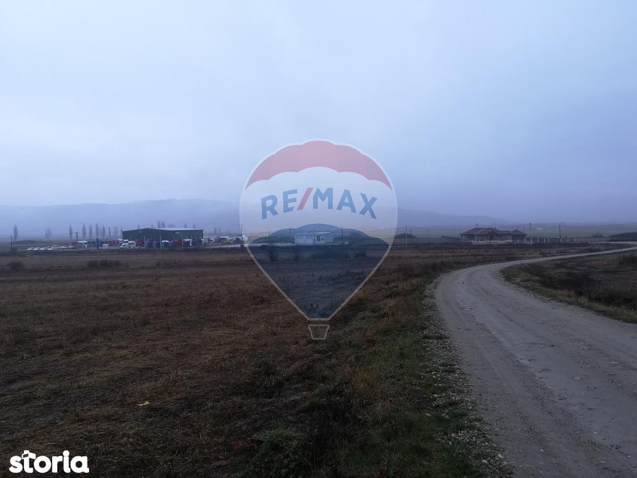 Teren de Vanzare, Cluj (judet), Gligoreşti - Foto 7
