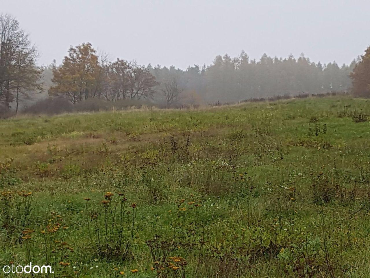 Działka na sprzedaż, Opawica, głubczycki, opolskie - Foto 2