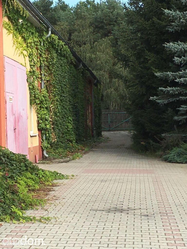 Hala/Magazyn na sprzedaż, Zielona Góra, Drzonków - Foto 4
