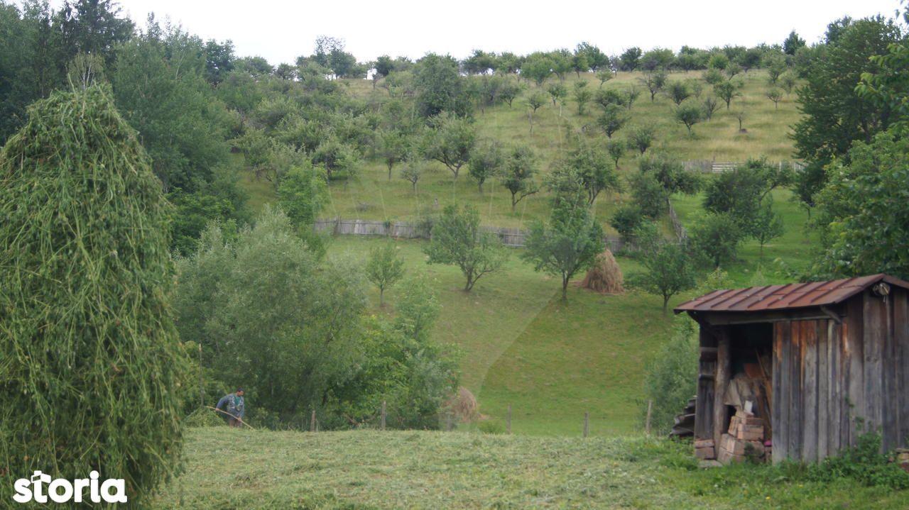 Casa de vanzare, Neamț (judet), Bălţăteşti - Foto 8