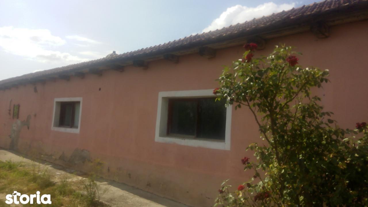 Casa de vanzare, Bihor (judet), Nojorid - Foto 19