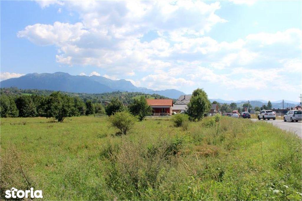 Teren de Vanzare, Brașov (judet), Bran - Foto 14