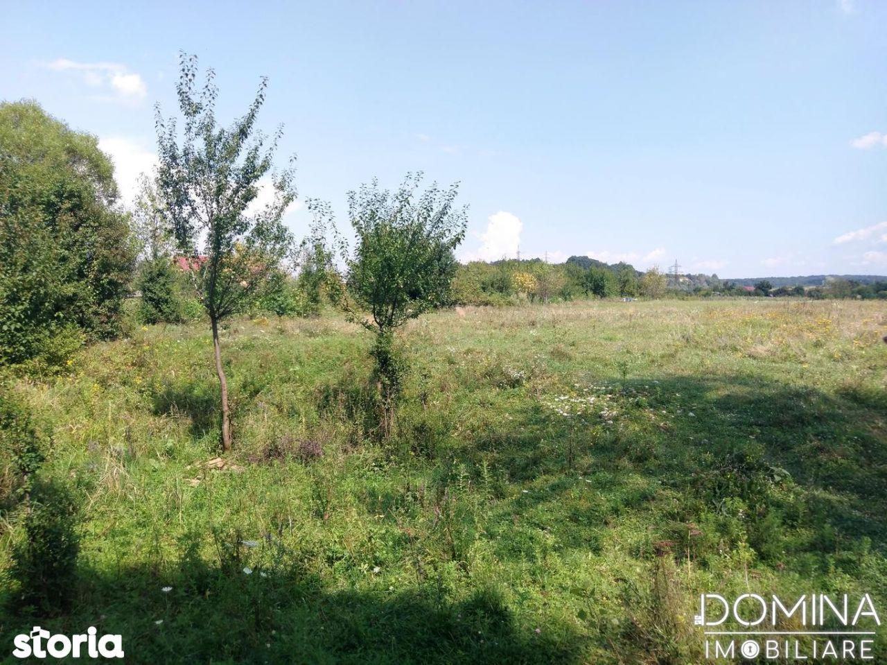 Teren de Vanzare, Gorj (judet), Zona Abator - Foto 2