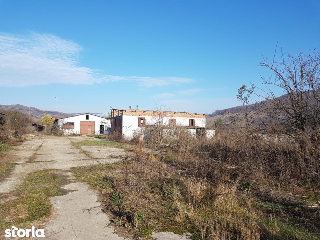 Depozit / Hala de vanzare, Cluj (judet), Sântioana - Foto 5
