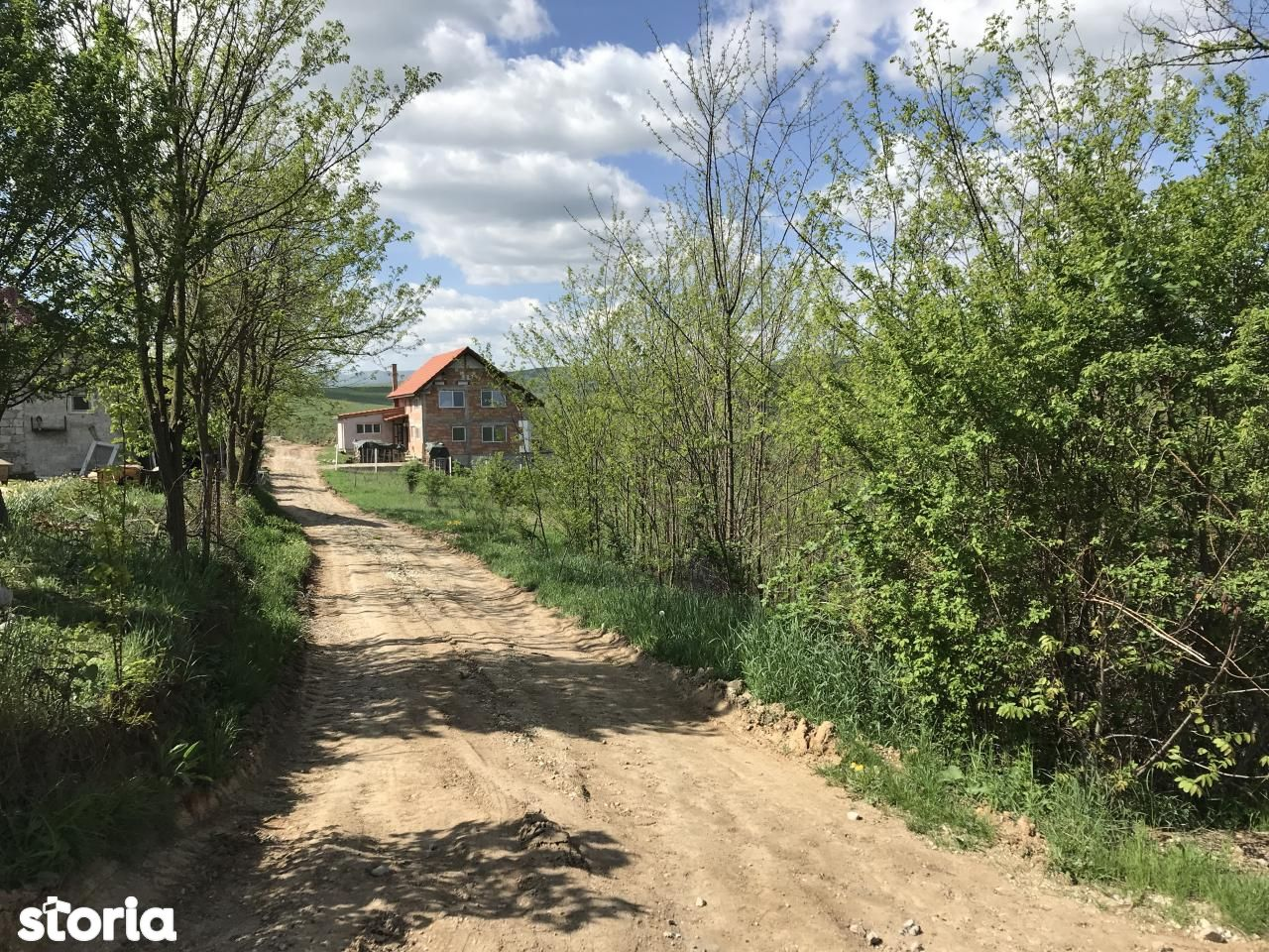 Teren de Vanzare, Hunedoara (judet), Hunedoara - Foto 3