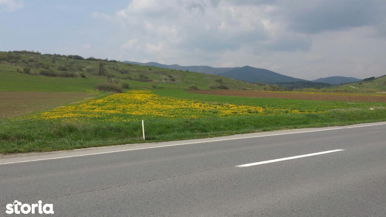 Teren de Vanzare, Brașov (judet), Măieruş - Foto 1
