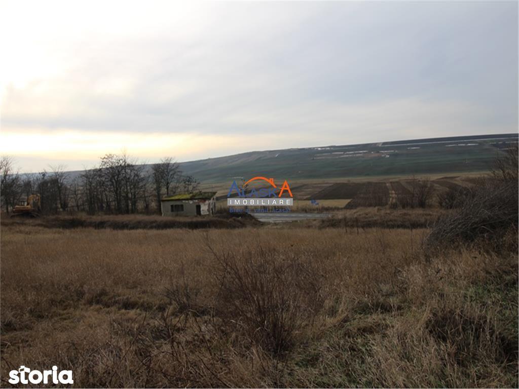 Teren de Vanzare, Iași (judet), Ciorteşti - Foto 14