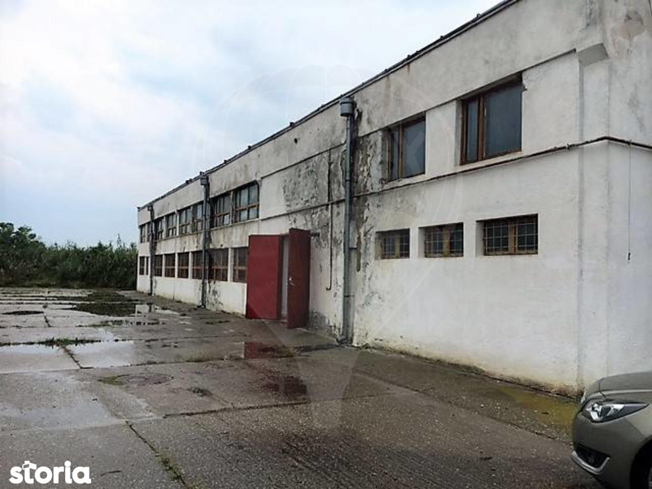 Depozit / Hala de vanzare, Sibiu (judet), Loamneş - Foto 4