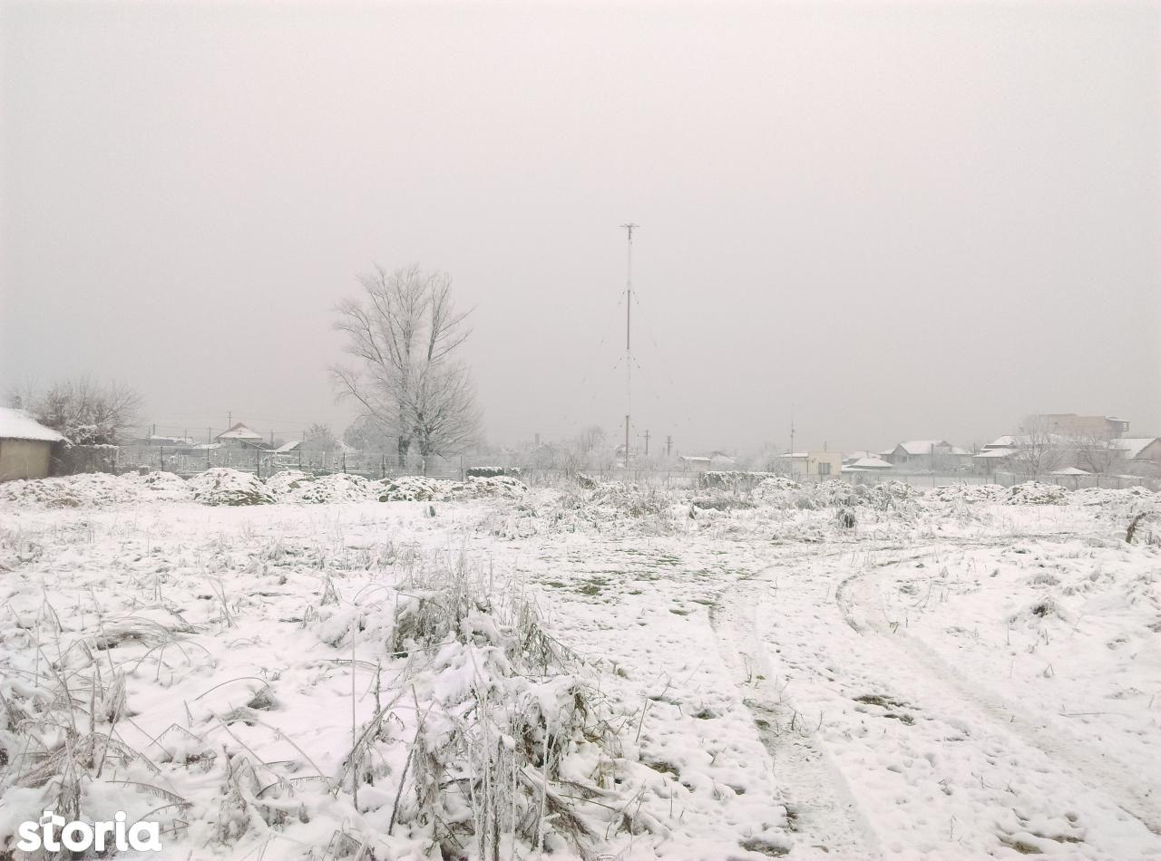 Teren de Vanzare, Dolj (judet), Lascăr Catargiu - Foto 19