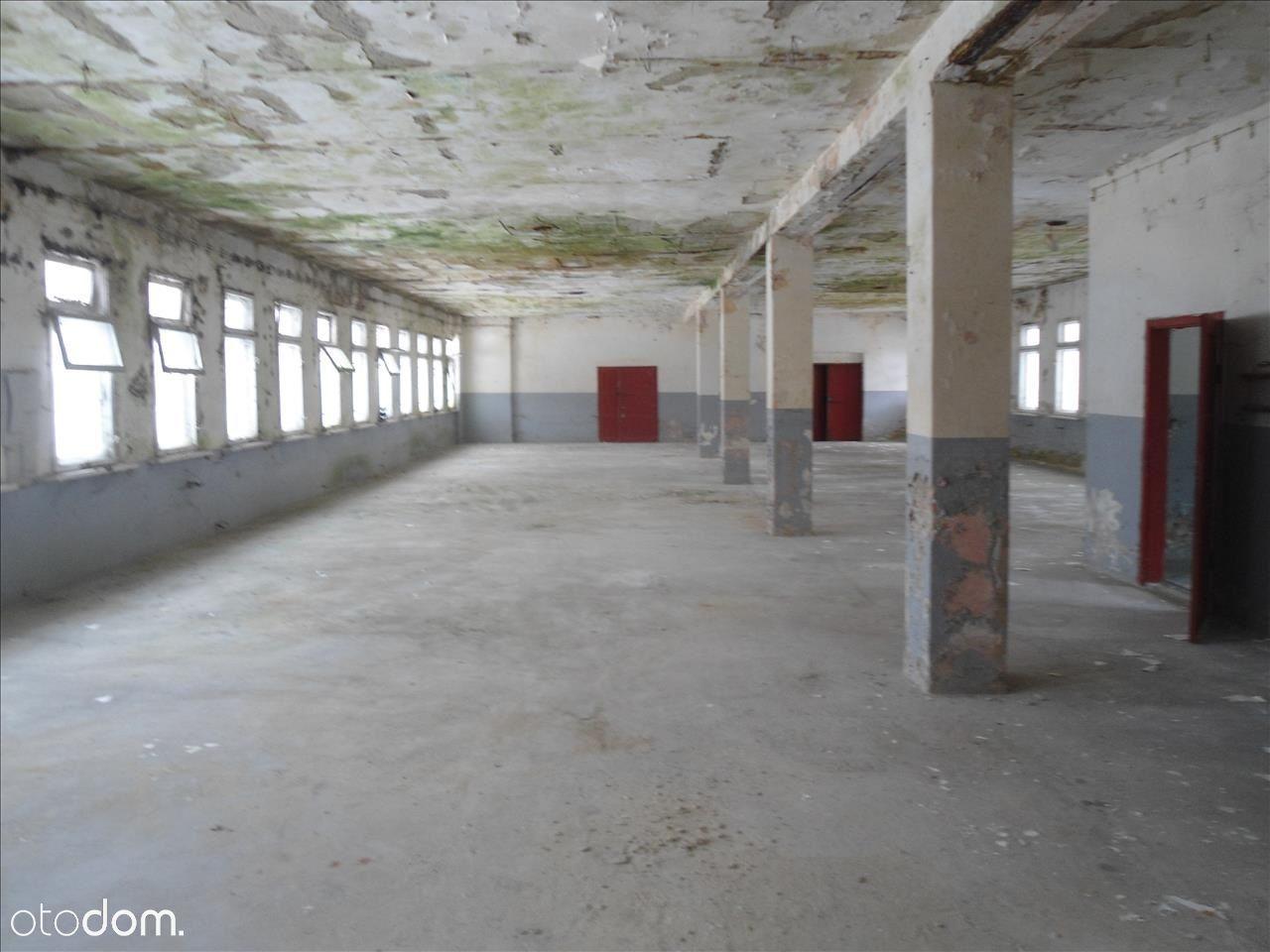 Lokal użytkowy na sprzedaż, Lewin Kłodzki, kłodzki, dolnośląskie - Foto 8