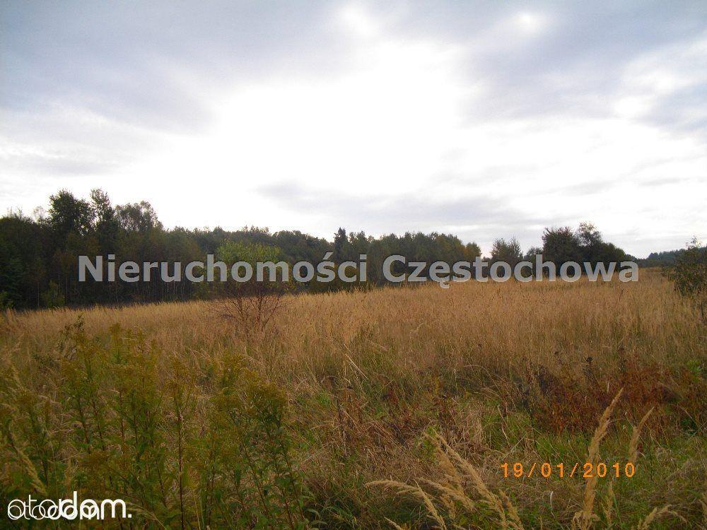 Działka na sprzedaż, Aleksandria, częstochowski, śląskie - Foto 1