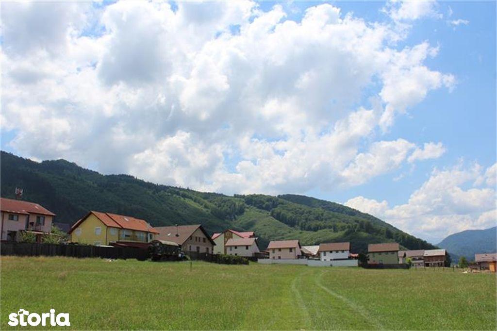 Teren de Vanzare, Brașov (judet), Săcele - Foto 6