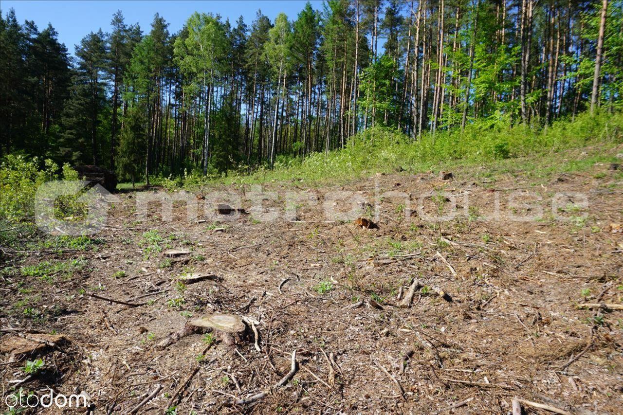 Działka na sprzedaż, Łupstych, olsztyński, warmińsko-mazurskie - Foto 2