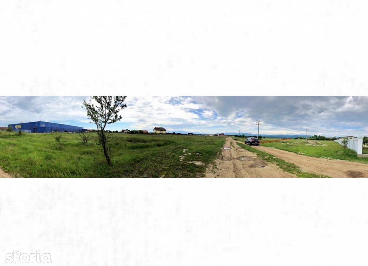 Teren de Vanzare, Sibiu (judet), Sibiu - Foto 4