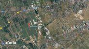 Teren de Vanzare, Ilfov (judet), Clinceni - Foto 2