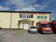 Lokal użytkowy na wynajem, Biała Podlaska, lubelskie - Foto 6