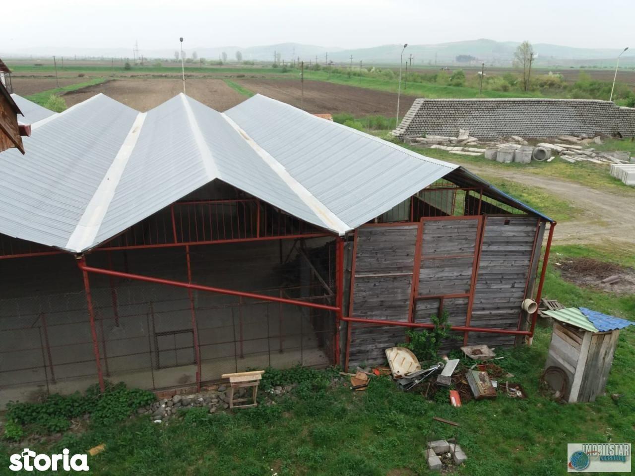 Spatiu Comercial de inchiriat, Mureș (judet), Târgu Mureş - Foto 2