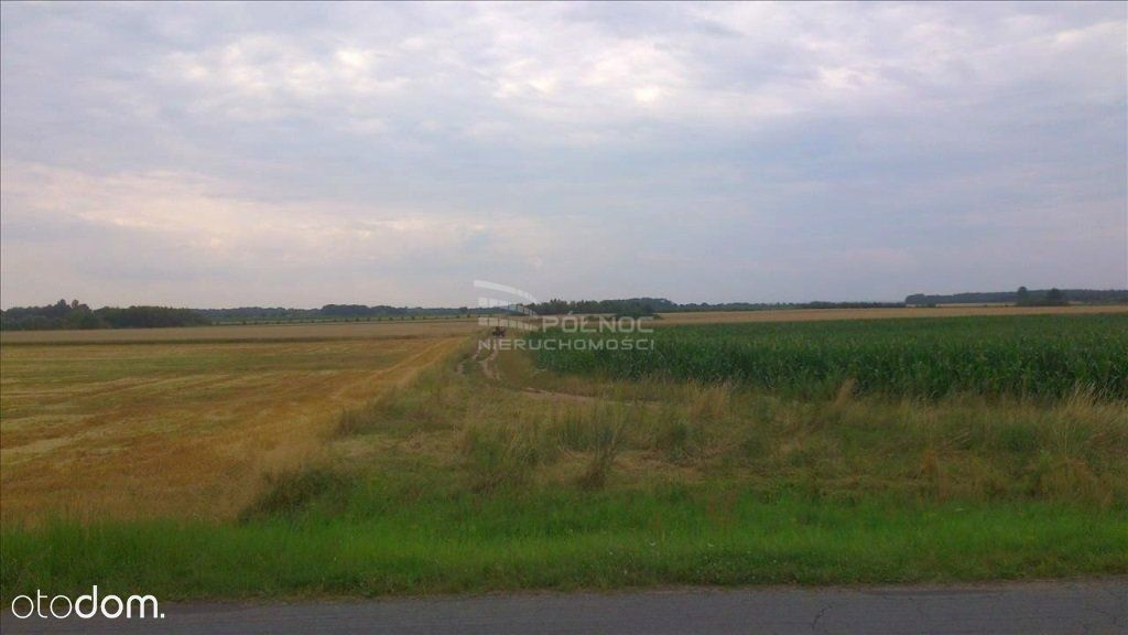 Działka na sprzedaż, Skałka, wrocławski, dolnośląskie - Foto 5