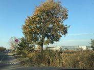 Lokal użytkowy na sprzedaż, Legnica, dolnośląskie - Foto 18
